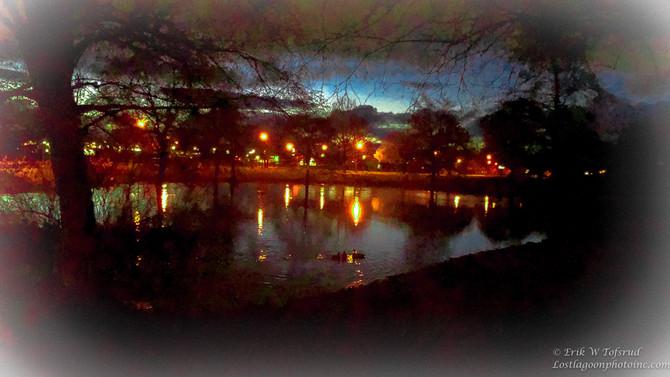 Timber Linn Park, Albany, OR, USA