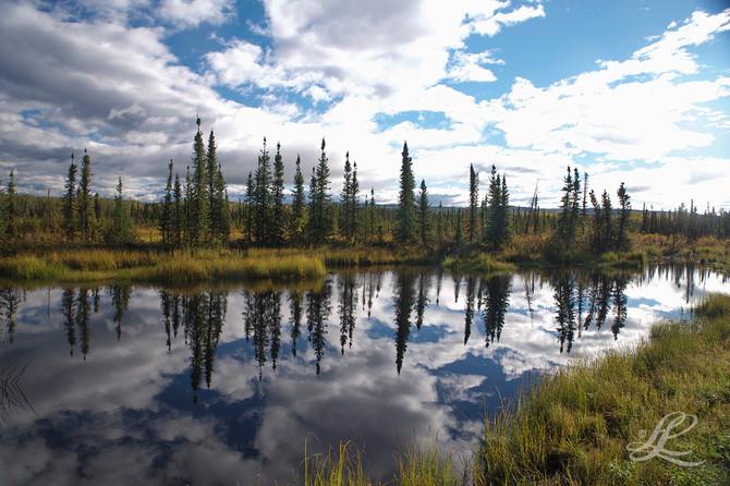 Dawson City Yukon, Canada