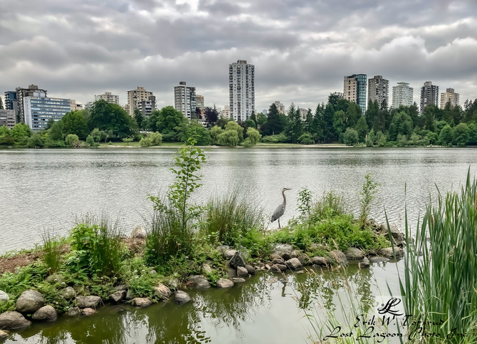 Peaceful, but threatening clouds, Lost Lagoon, WestEnd, Vancouver, BC, Canada