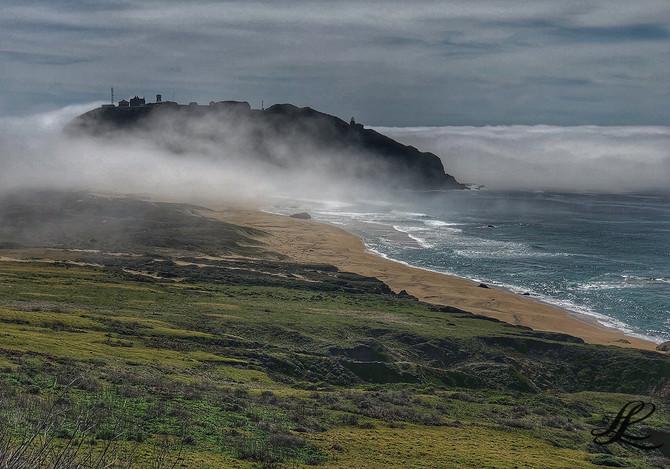 Ano Nuevo Island, Pacific Coast Hwy, CA, USA