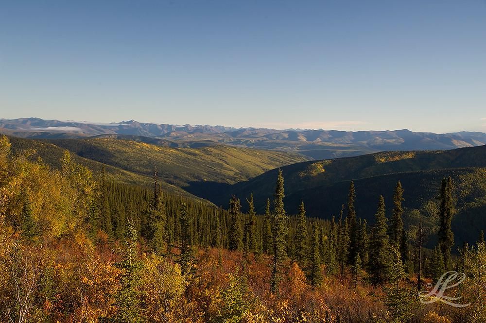 Top of The World Road 360° View: Yukon to Alaska