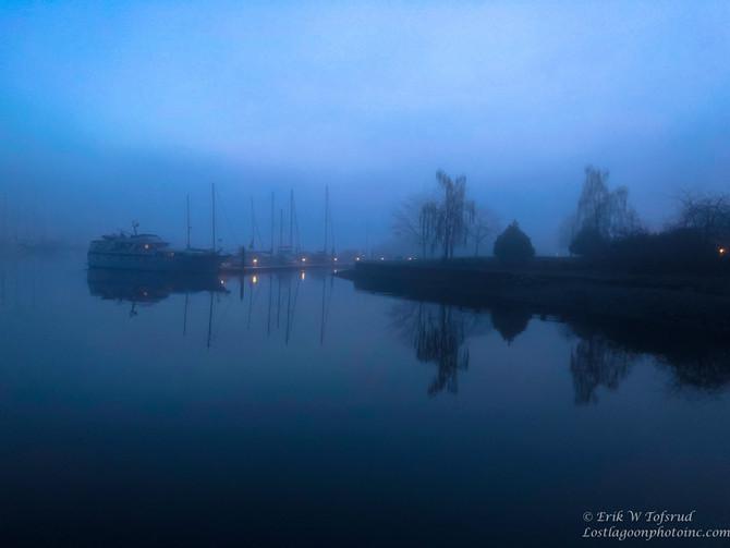 Fog, Coal Harbour, Vancouver, BC, Canada