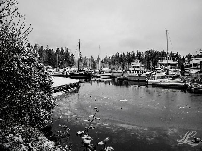 Bayshore Marina, Vancouver, BC