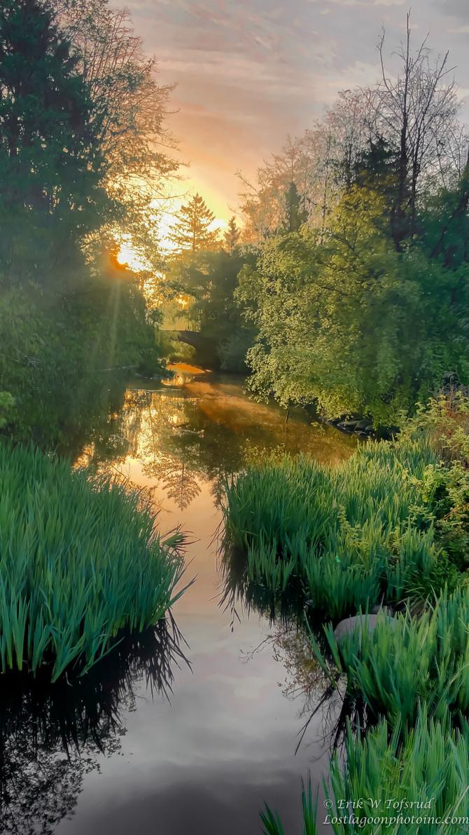 Sunrise, Lost Lagoon, Vancouver BC, Canada