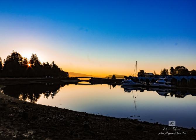 My morning walk views, Deadman Island, Bridge, Inner Harbour, Vancouver, BC, Canada #40