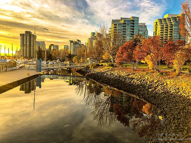 My morning walk views, Vancouver, BC, Canada #5