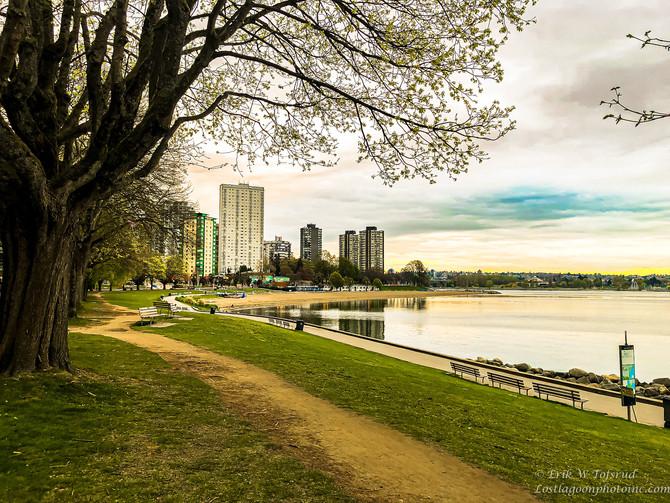 My morning walk views, Vancouver, BC, Canada #7