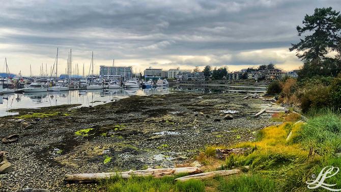 Marina & Downtown, Sidney, BC, Canada,
