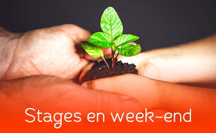 Stages en week-end