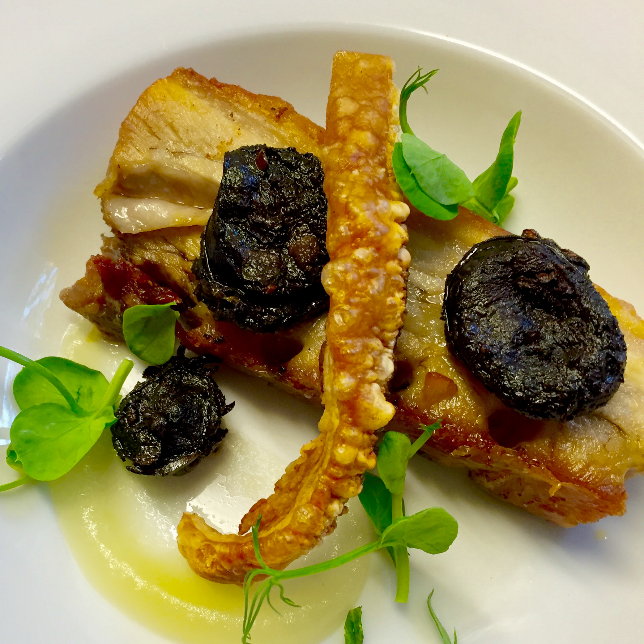 Confit_pork_belly_served_with_apple_pureé,_morcilla,_pea_shoots_&_a_white_port_sauce_(GF