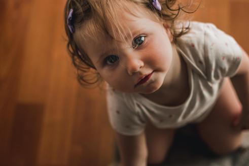 adorable toddler portrait, family photog