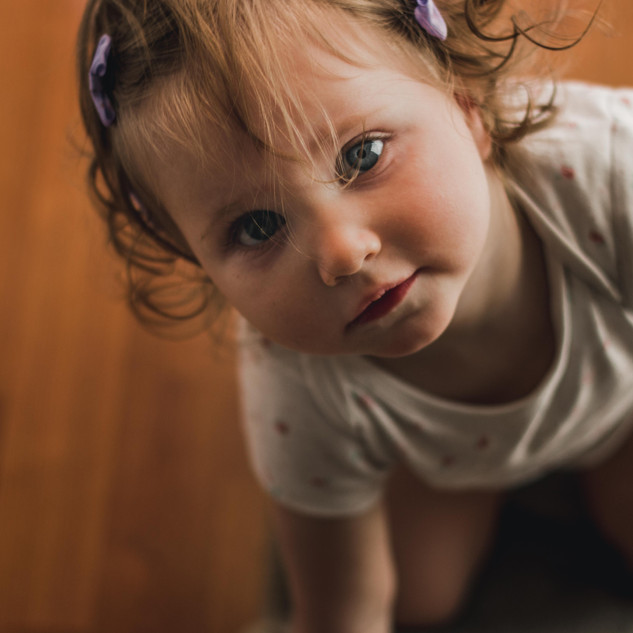 adorable toddler portrait, family photog