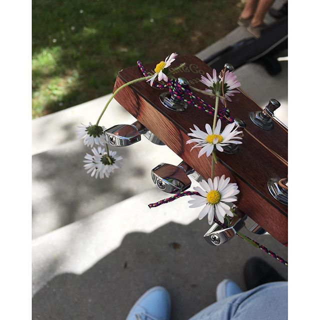 I love this pic it happened when we went to the grass in our school garden and a friend of me came t