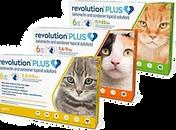 12275-revolution-plus-topical-solution-f