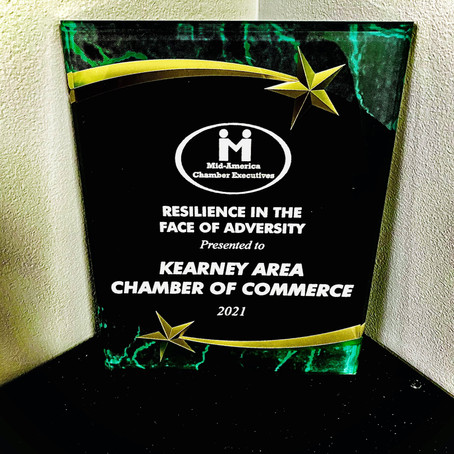 RESILIENCY IN THE FACE OF ADVERSITY AWARD
