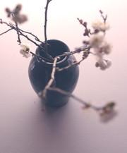 黒呉須花器