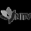 National Indigenous Television Media company Logo