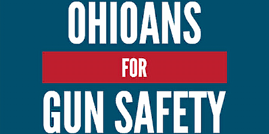 Expanded Background Checks Petition (1)