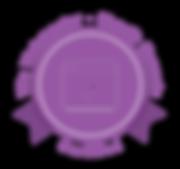 WIX Certifed Webmaster