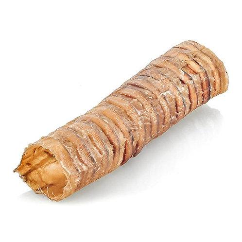 Barkworthies Trachea