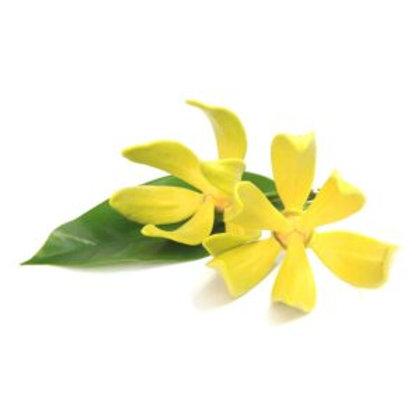 Ylang Ylang , 10 ml Bio ätherisches Öl