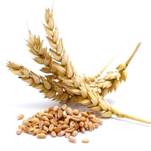 Weizen Pflanzenöl, 100 ml Bio