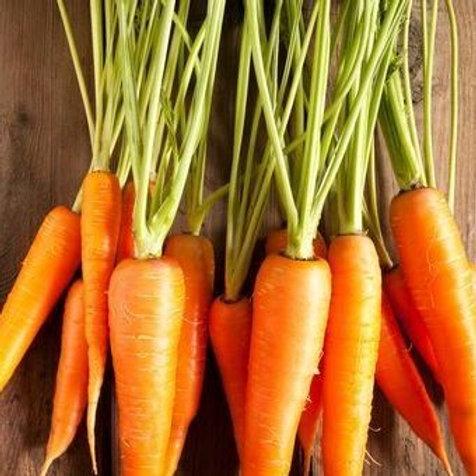 Karotten Macérat, 100 ml