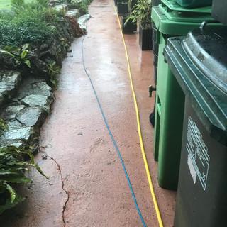Garden path after