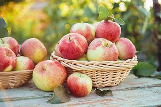 apples-PYLT9SD.jpg
