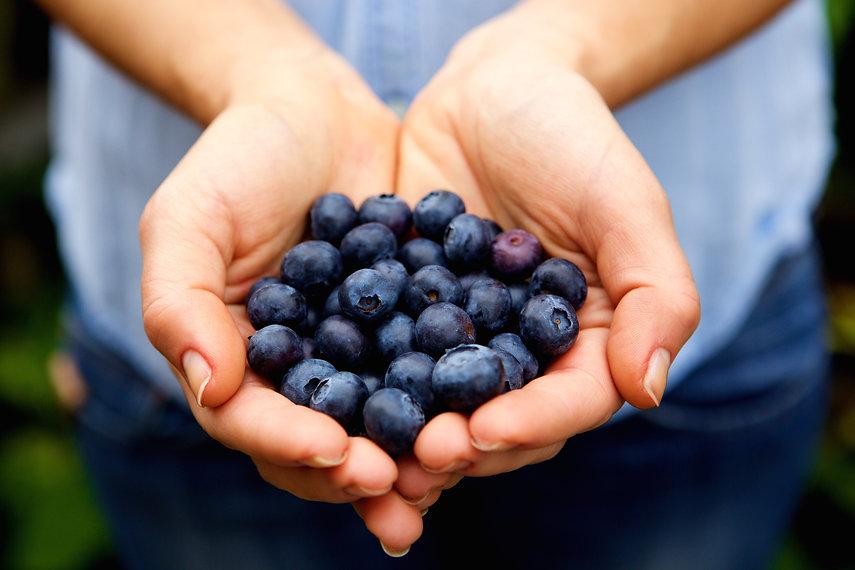 handful-of-fresh-blueberries-PSLEUL8.jpg