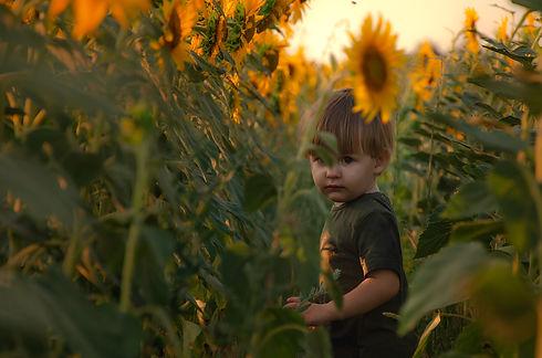 little-boy-in-a-sunflower-field-2021-05-11-17-22-33-utc.jpg