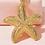 Thumbnail: Starfish Drop