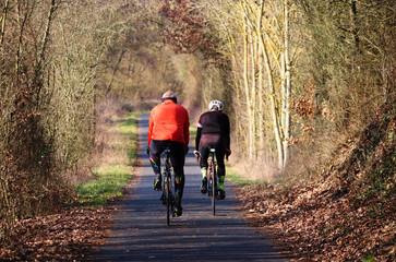 cyclists-4002948_1920.jpg