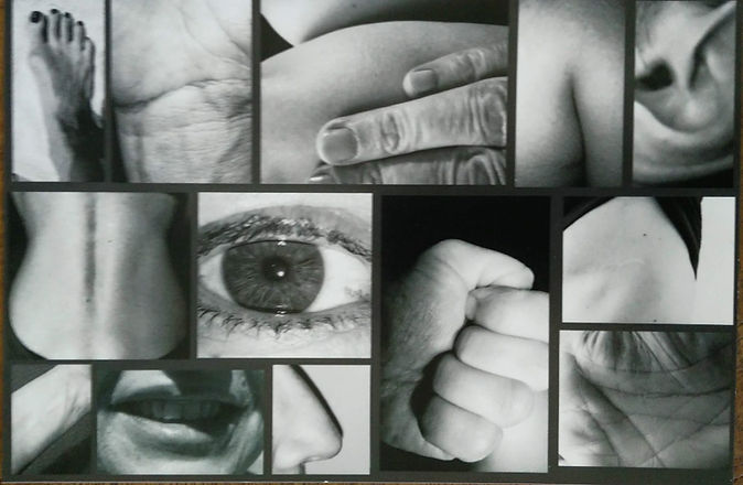lichaamsdelen.jpg