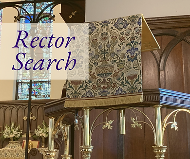 Rector Search.png