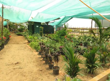 ICSR's polyhouse on Manorama News