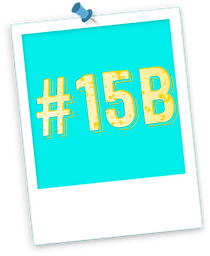 #15b nb.png