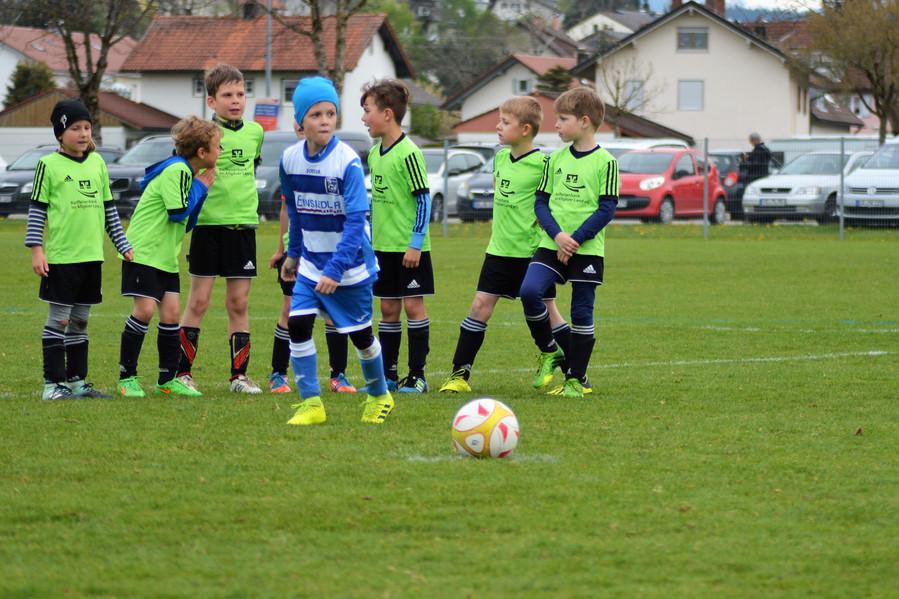 VfB U9 JM (7)