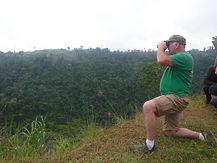 Bird watching, Toucans
