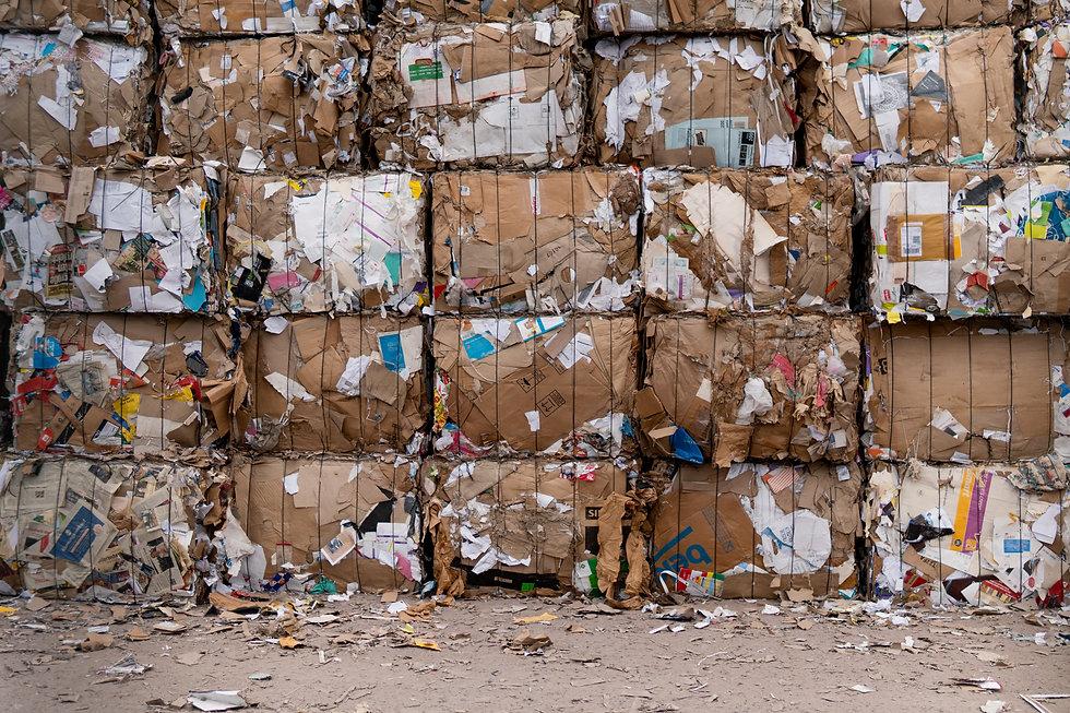 garbage-lot-2967770.jpg