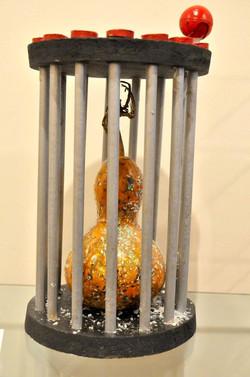 Cage à Mouche au cougourdon