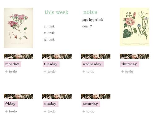 Vintage Flower Daily Tasks Notion Template