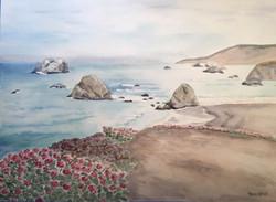Sea Blooms