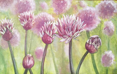 Chive blossoms.jpg