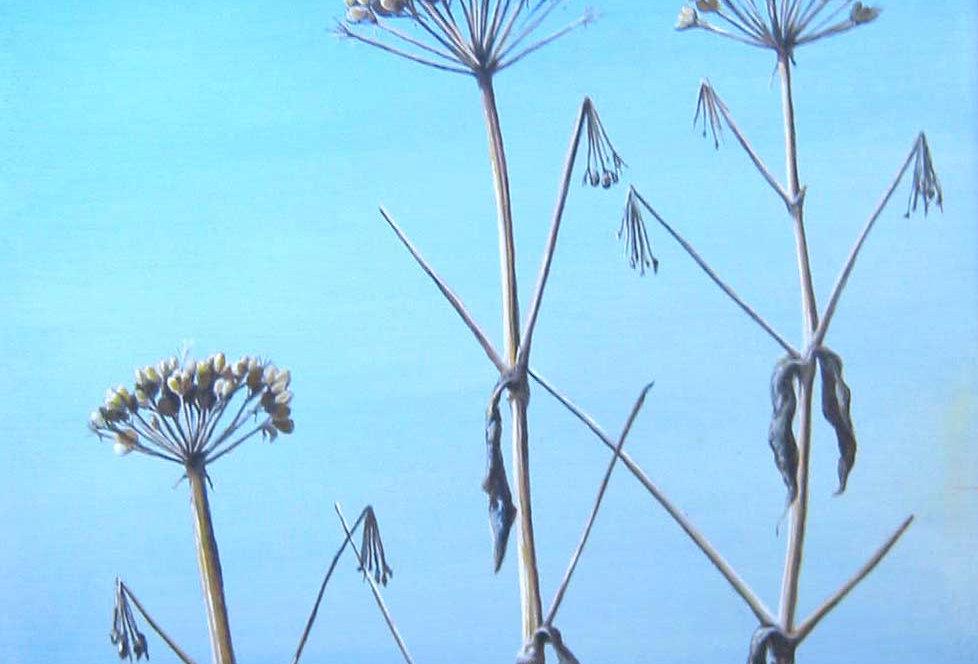 Dead Beach Flowers  SOLD