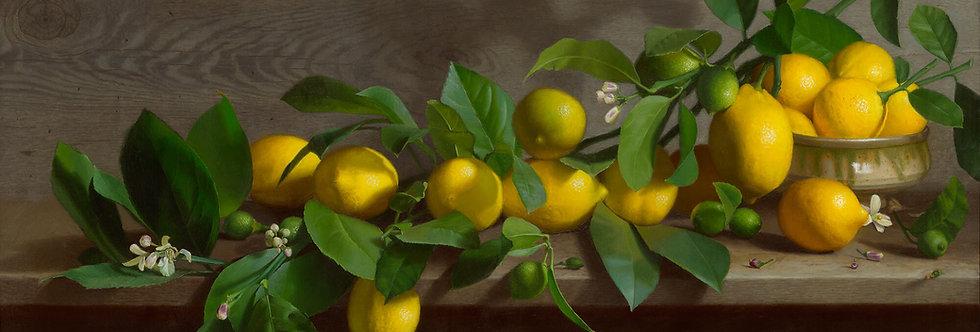 Lemon Panorama