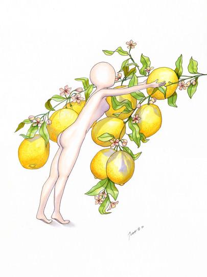 Perfect lemon