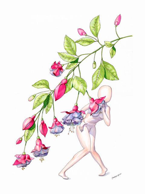 Fuchsia SMALL.jpg