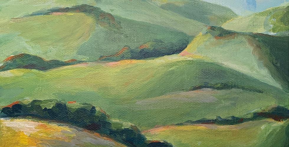 Petaluma Hills (SOLD)