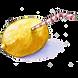 Single Lemon.png